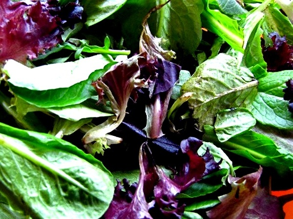 Nutrient rich Leafy Greens for healthy weight loss