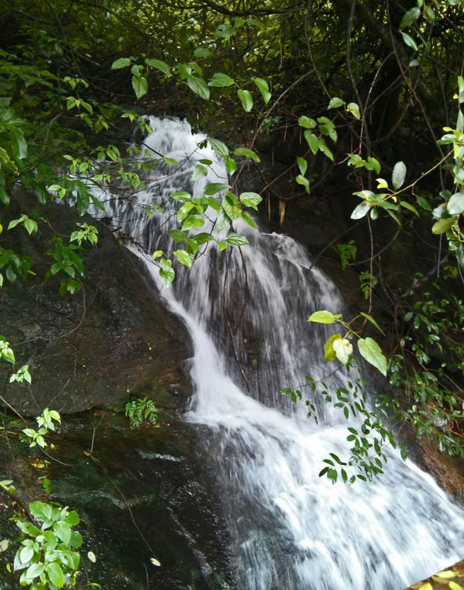Waterfall at Lakkidi